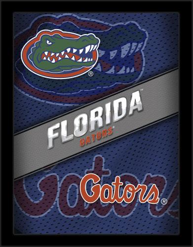 Florida_Poster